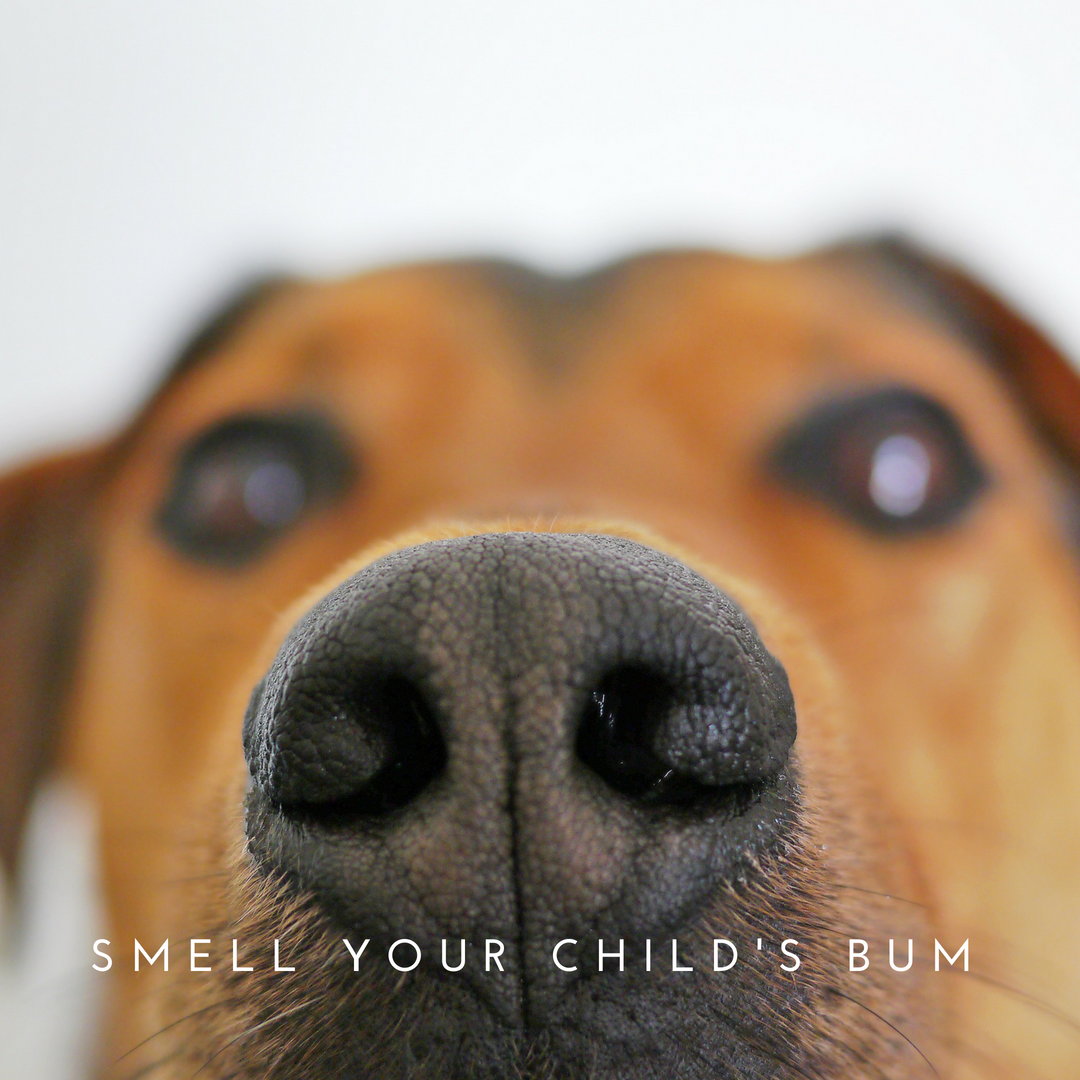 SMELL YOUR CHILD'S BUM copy